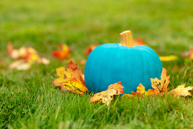 Teal Pumpkin Event